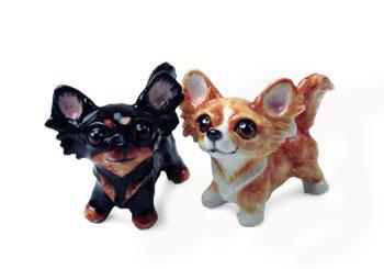Chihuahua - langhåret