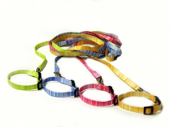 Lollipop stripe halsbånd-kobbel
