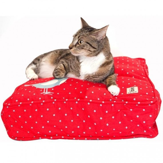 Rouge katteseng